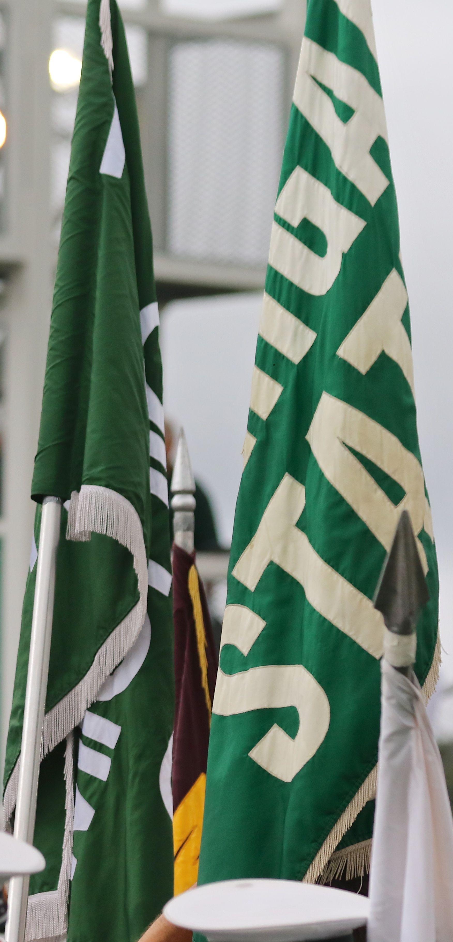 MSU Flags