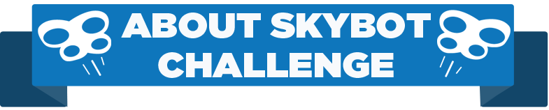 About Skybot Challenge