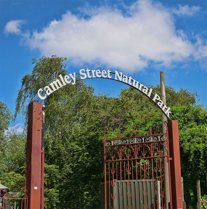 Camley Street Nature Park - Oasis in the City