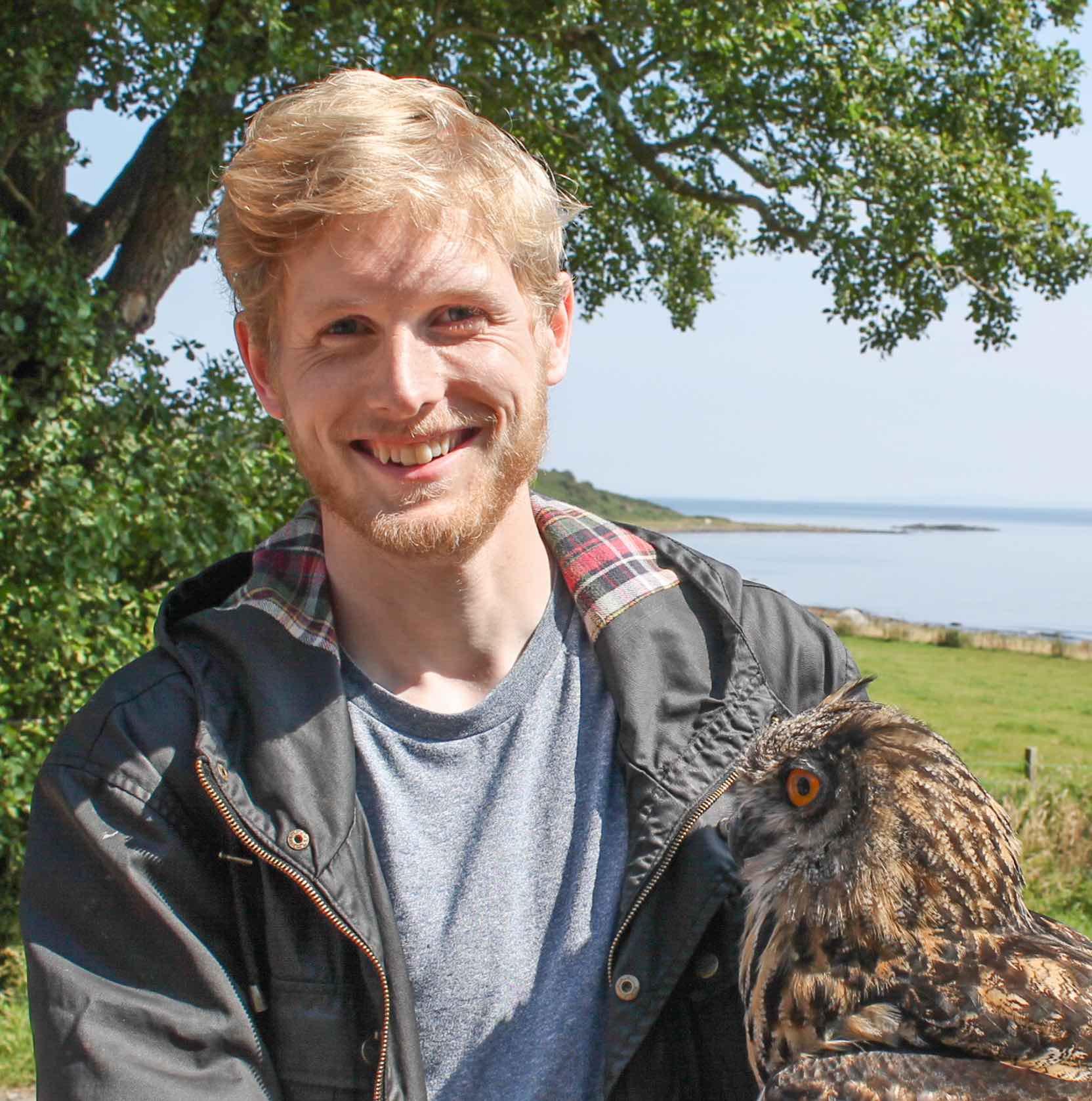 Finn Owl