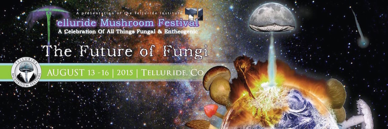 Official Banner for TMF35
