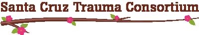 Santa Cruz Traums Consortium logo