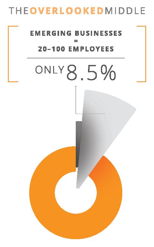8% Pie Chart