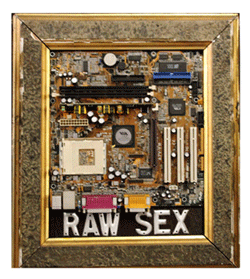 Raw Sex - Mixed Media Assemblage by Fred Feldmesser