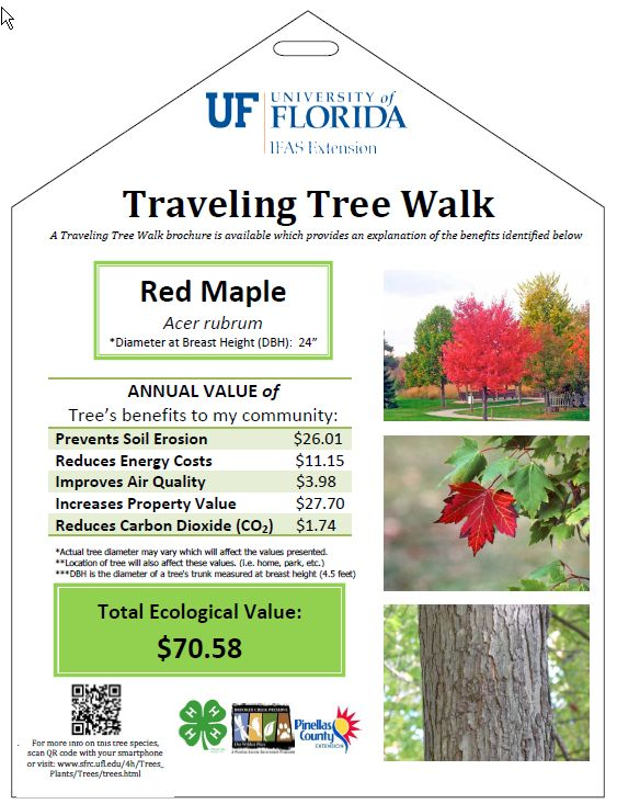 Traveling Tree Walk Sign