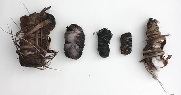 Earth bundles (Bideford Black, Onion and Eucalyptus, June 2013) © F Owen