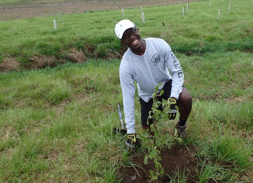 Two volunteers planting a tree at a Growing Native Tree Planting event.