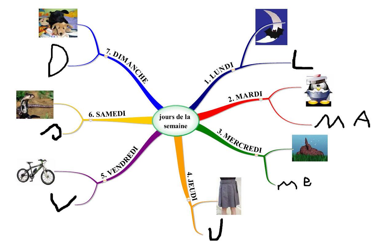 Une carte mentale pour organiser sa semaine d'étudiant et apprendre à son rythme