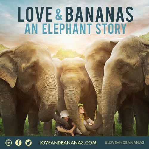 Love and Bananas