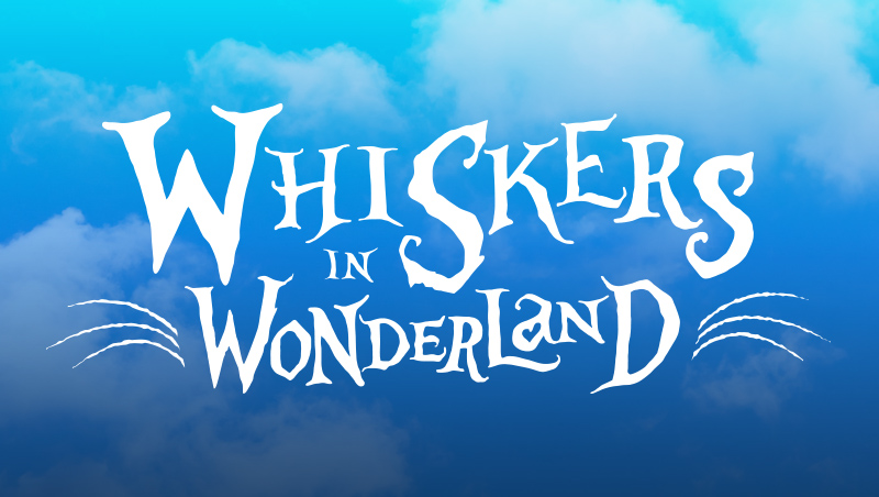 whiskers in wonderland
