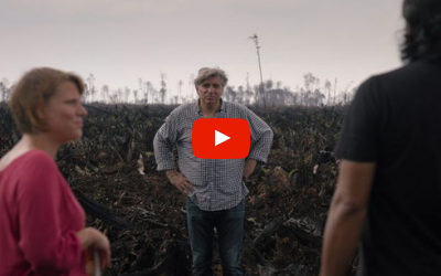 The Green Lie film trailer