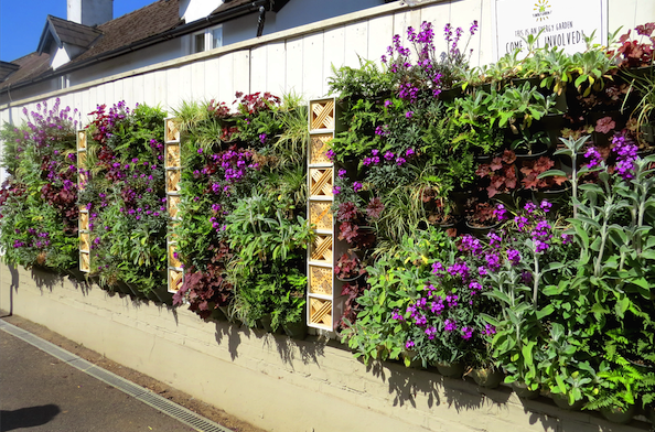One of many Energy Garden living walls