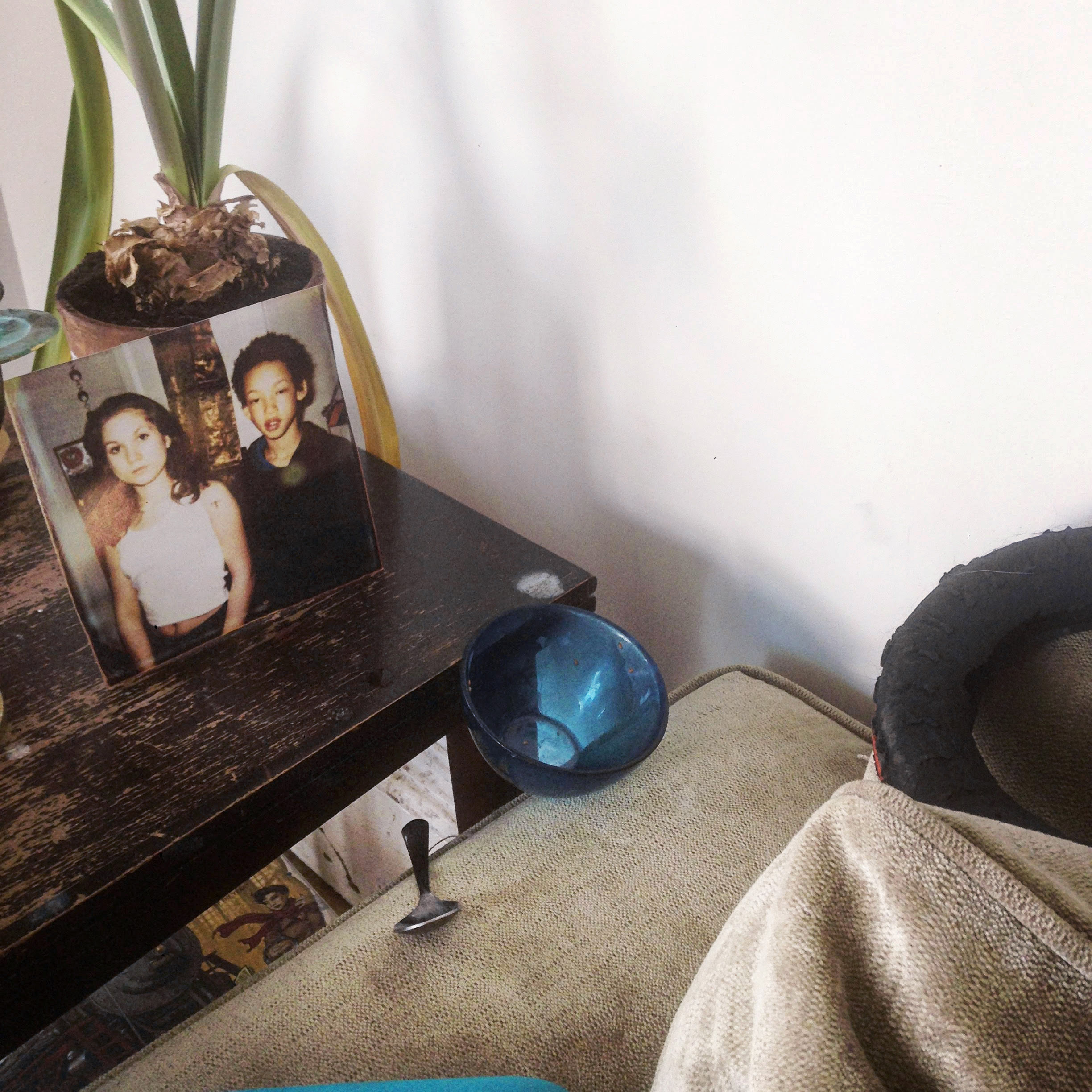 Photograph from NOTES - of a picture in a frame, plant, spoon and bowl