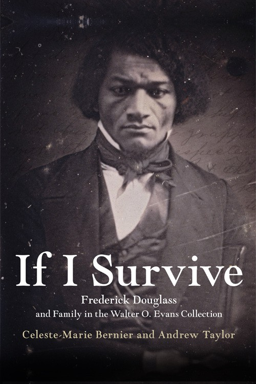 If I Survive book cover