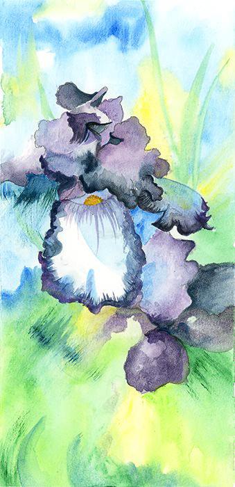 Hannah Hodges Watercolor