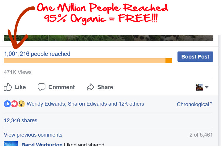 snapshot of Facebook page at 1m likes