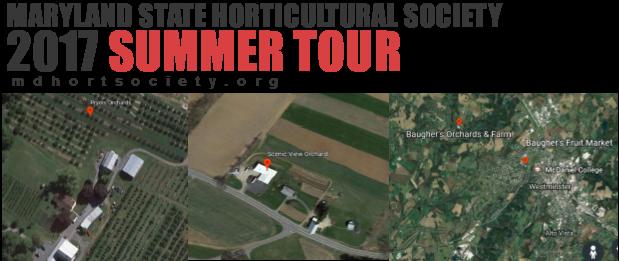 2017 Summer Tour