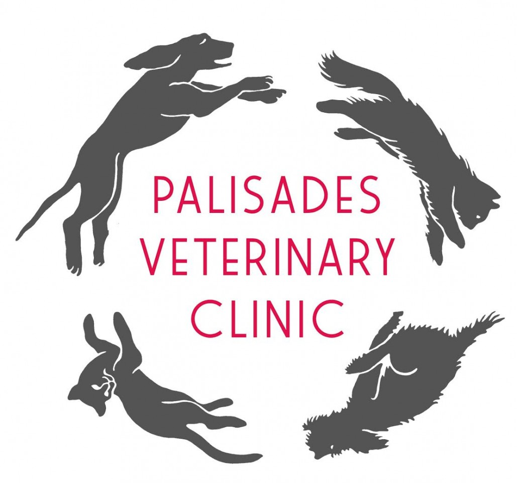 Palisades Veterinary Clinic