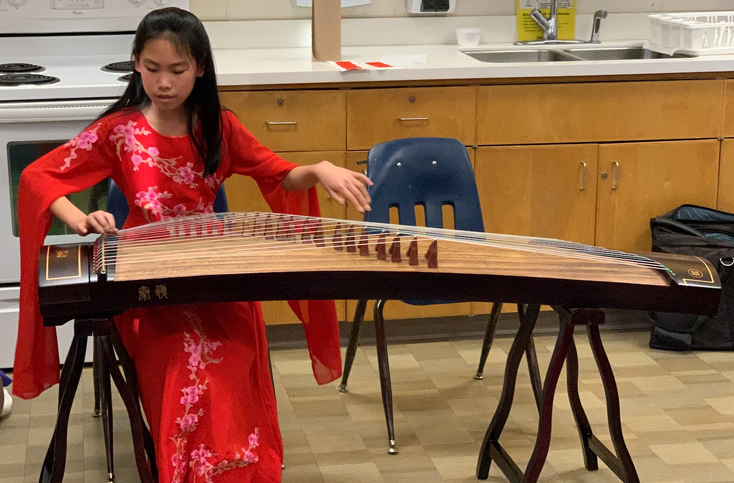 Listen to beautiful traditional Chinese instruments.