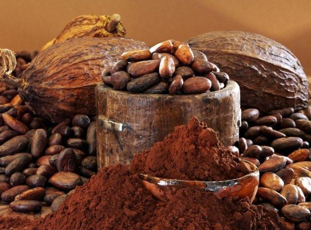 Image of Cocoa beans and Cocao pods