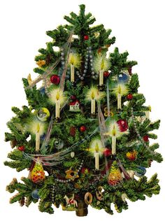 Gwrych Castle Victorian Christmas Tree