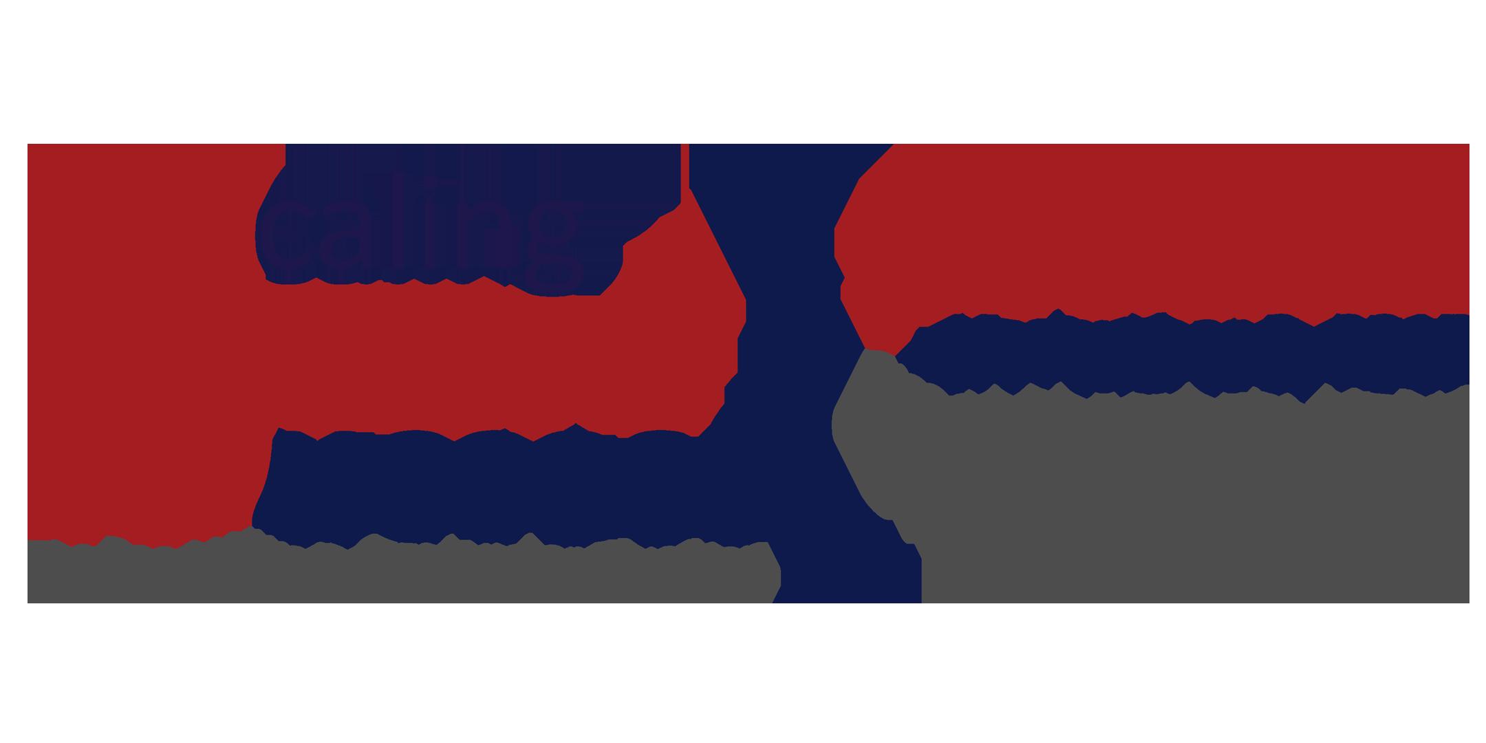 Scaling STEM Success Summit Logo