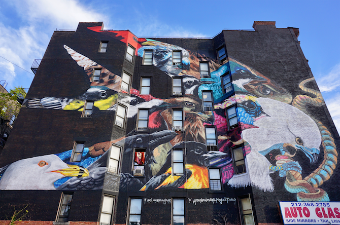 Audubon Birds Mural in Washington Heights