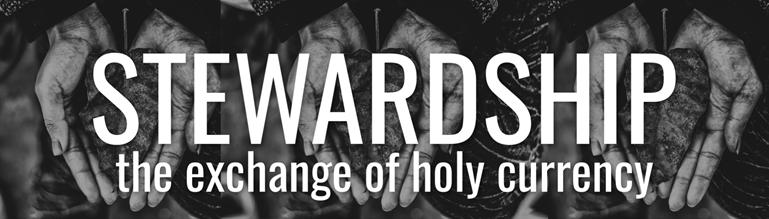stewardship banner logo