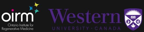 OIRM, Western University