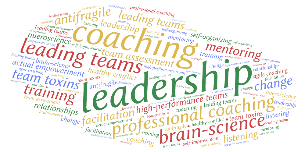 agile leadership wordart