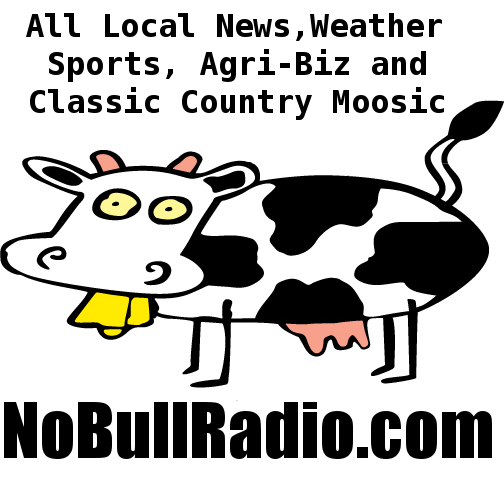 No Bull Radio Network Logo