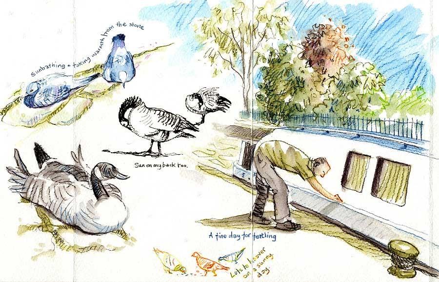 sketch 3 birds