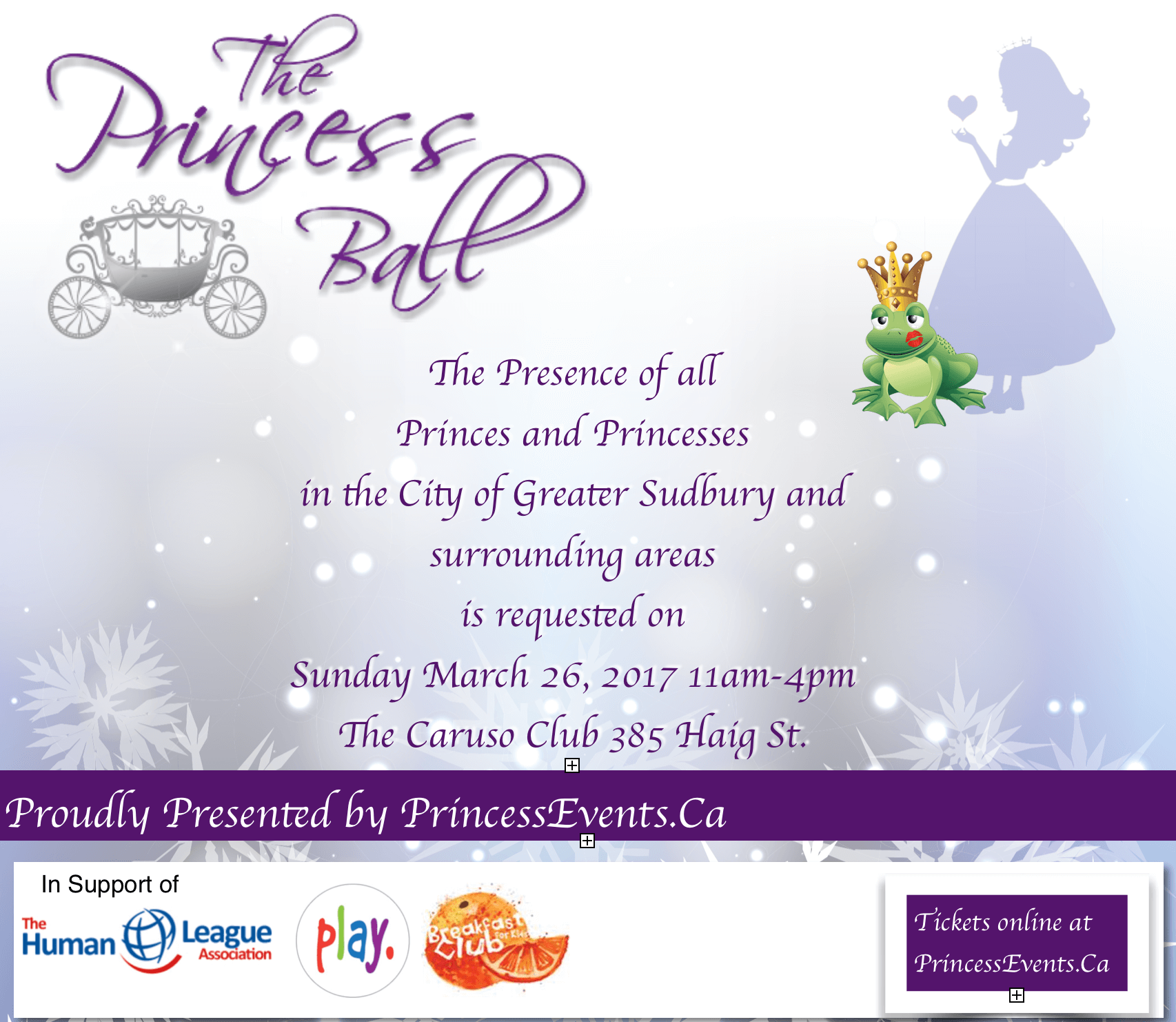 The Princess Ball Sudbury
