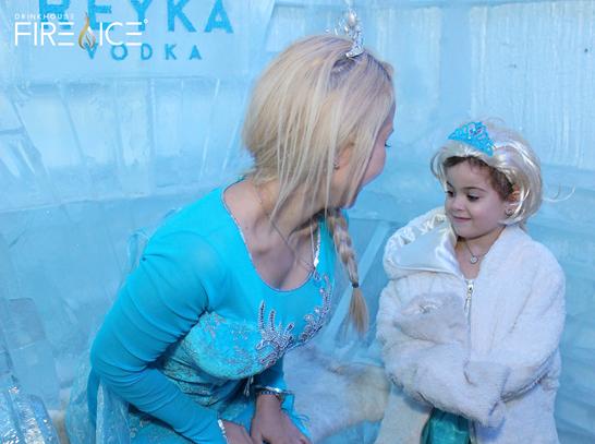 Elsa Miami Ice Bar