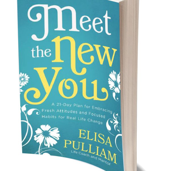 Meet the New You (cover)