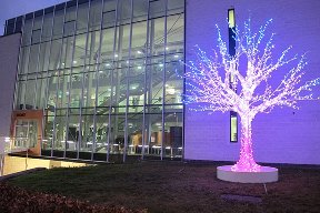 iString Light Tree on Lancaster University Campus
