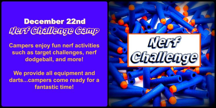 nerf_challenge