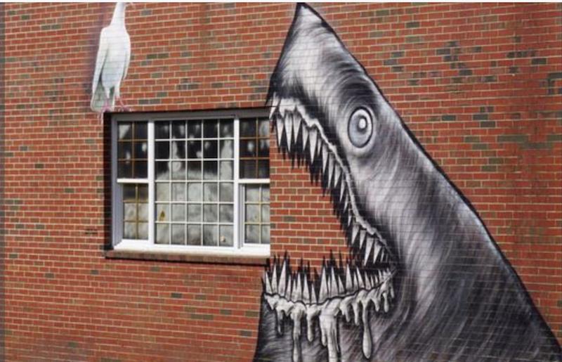 shark grafitti