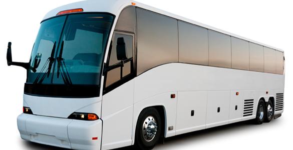 Bus tours casino gambling divorce statistics