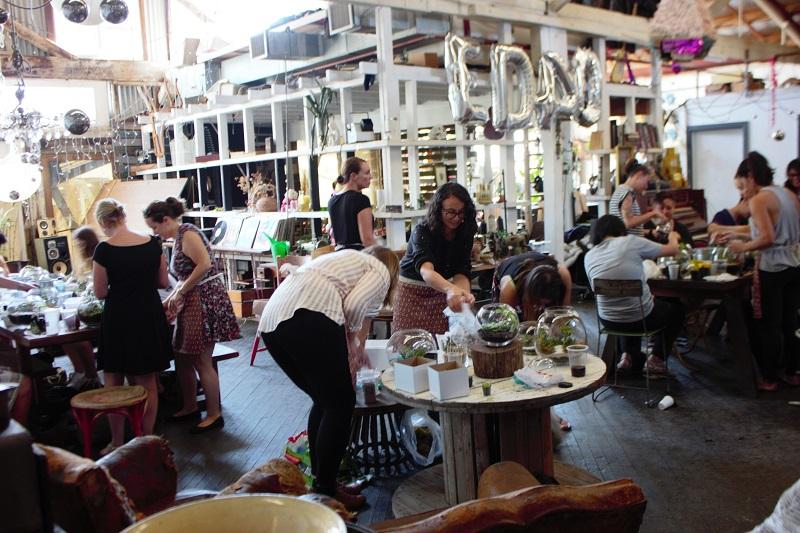 sydney terrarium workshop