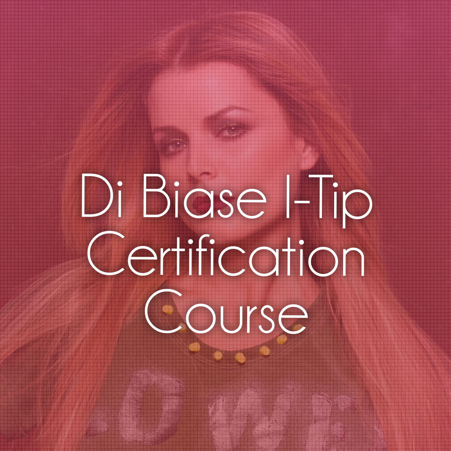 Get Hair Extension Trained Online With Di Biase Hair Usa Tickets
