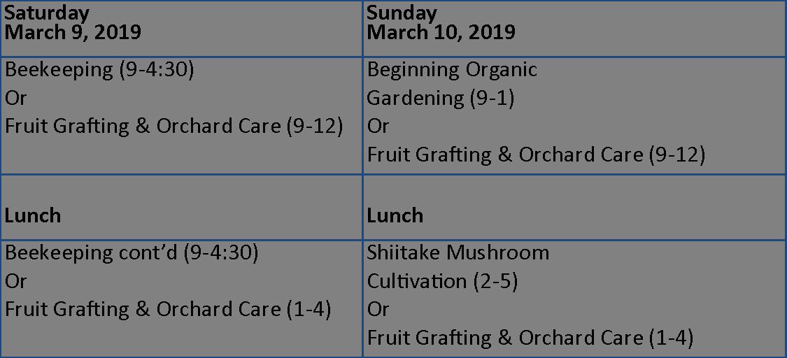 Class Schedule Visual
