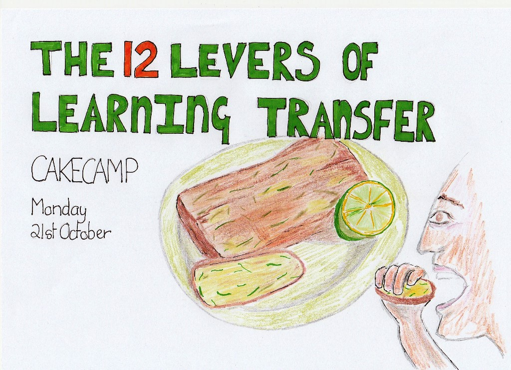 12 Levers of Learning Transfer