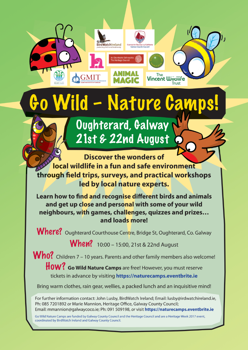 Poster_Go Wild Nature Camp_Oughterard