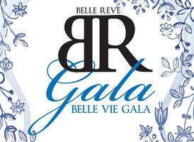 Belle Vie Gala: Celebrating 20 Years of Service at Belle Reve