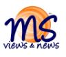 MSVN icon