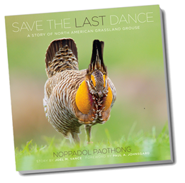 smallsavethelastdancenopbookcover.png
