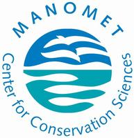 Manomet Center Shorebird Identification and Ecology Workshop