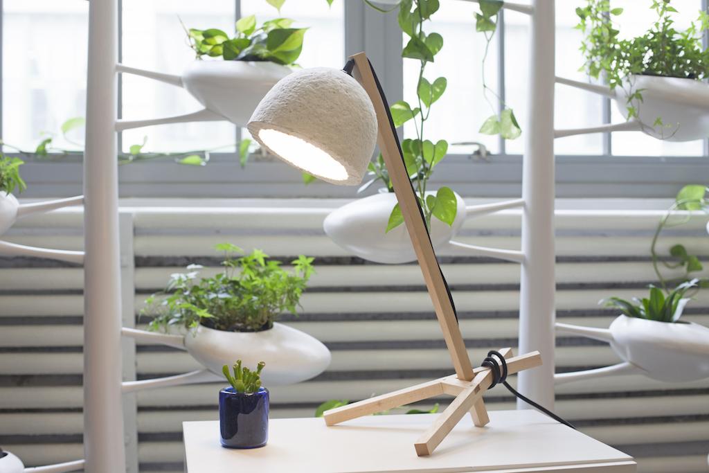 Image of Finished Lamp