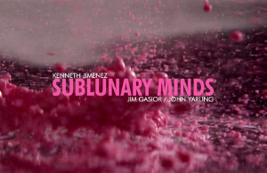 Sublinary Minds image